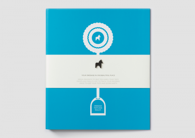 Leroy and Bongo Dressage Folder