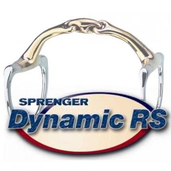 Dynamic RS Bits